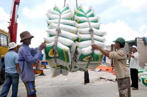 Năm 2019, điều gì đang chờ ngành xuất khẩu gạo?